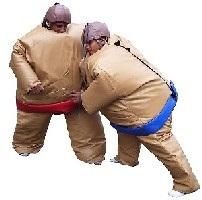 Équipement pour combat Sumo 12x12